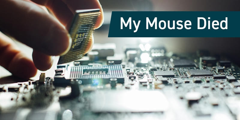My Mouse Died